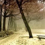 Stille für die hektische Vorweihnachtszeit