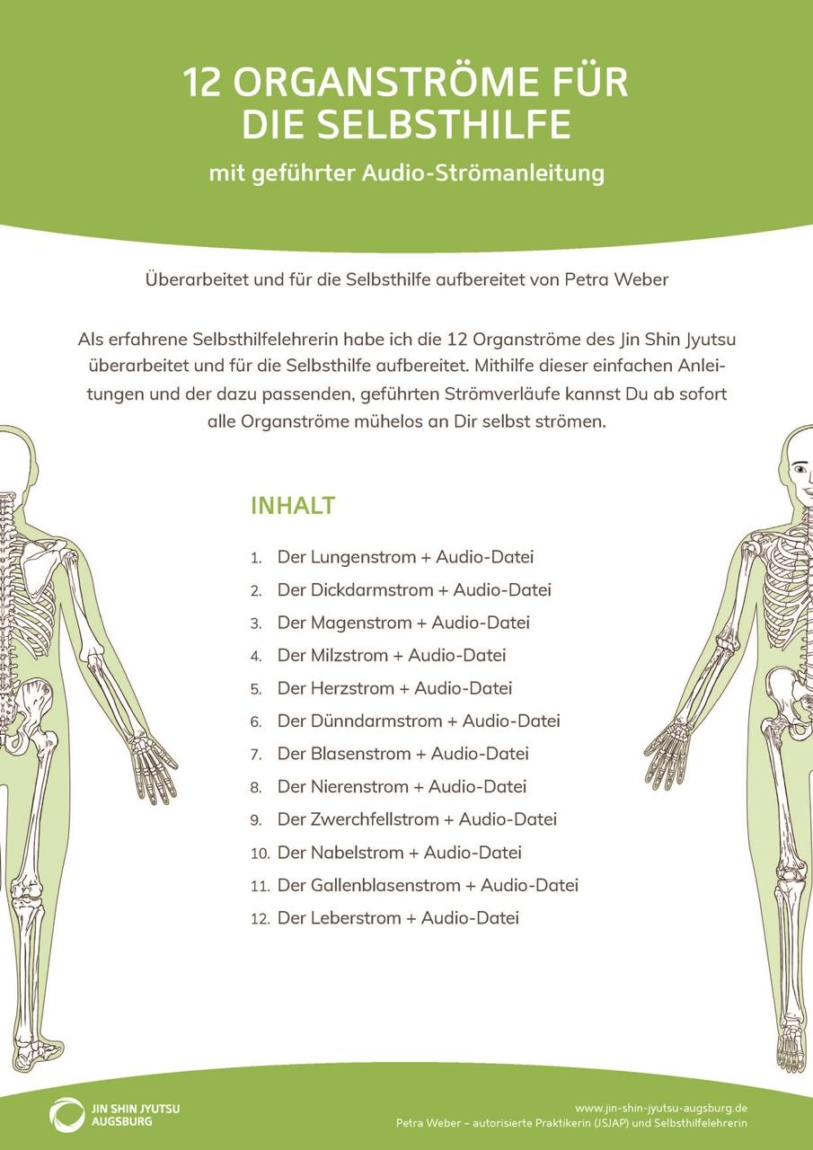 Deckblatt Jin Shin Jyutsu-Anleitung Organströme